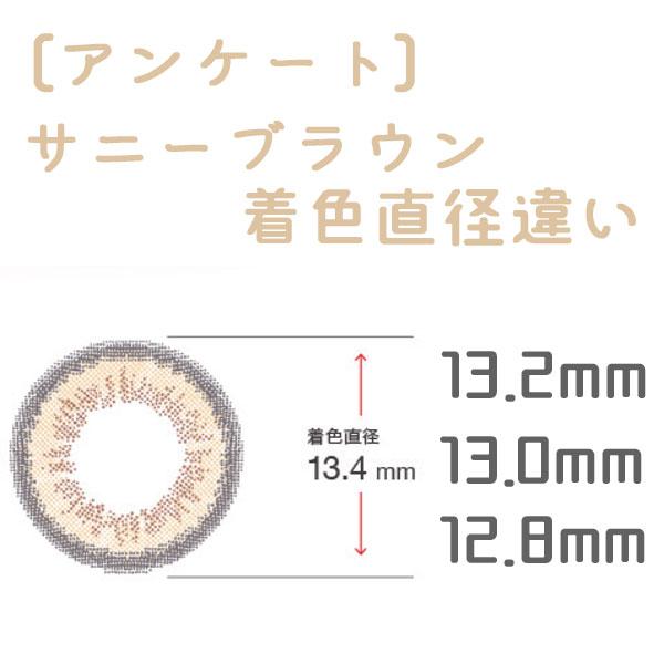 着色直径違いアンケート/サニーブラウン