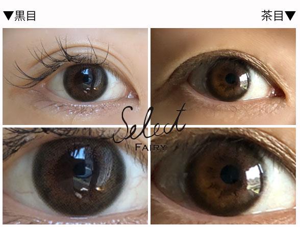サニー13.2mm1stサンプル/黒目茶目発色比較